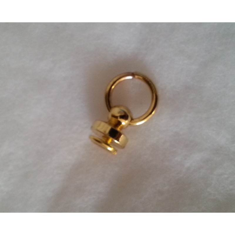 Poignée anneau couleur Argent